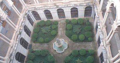 Control de plagas de palomas en Jaén
