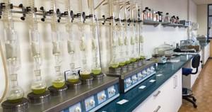 laboratorio-fumirrel-probetas